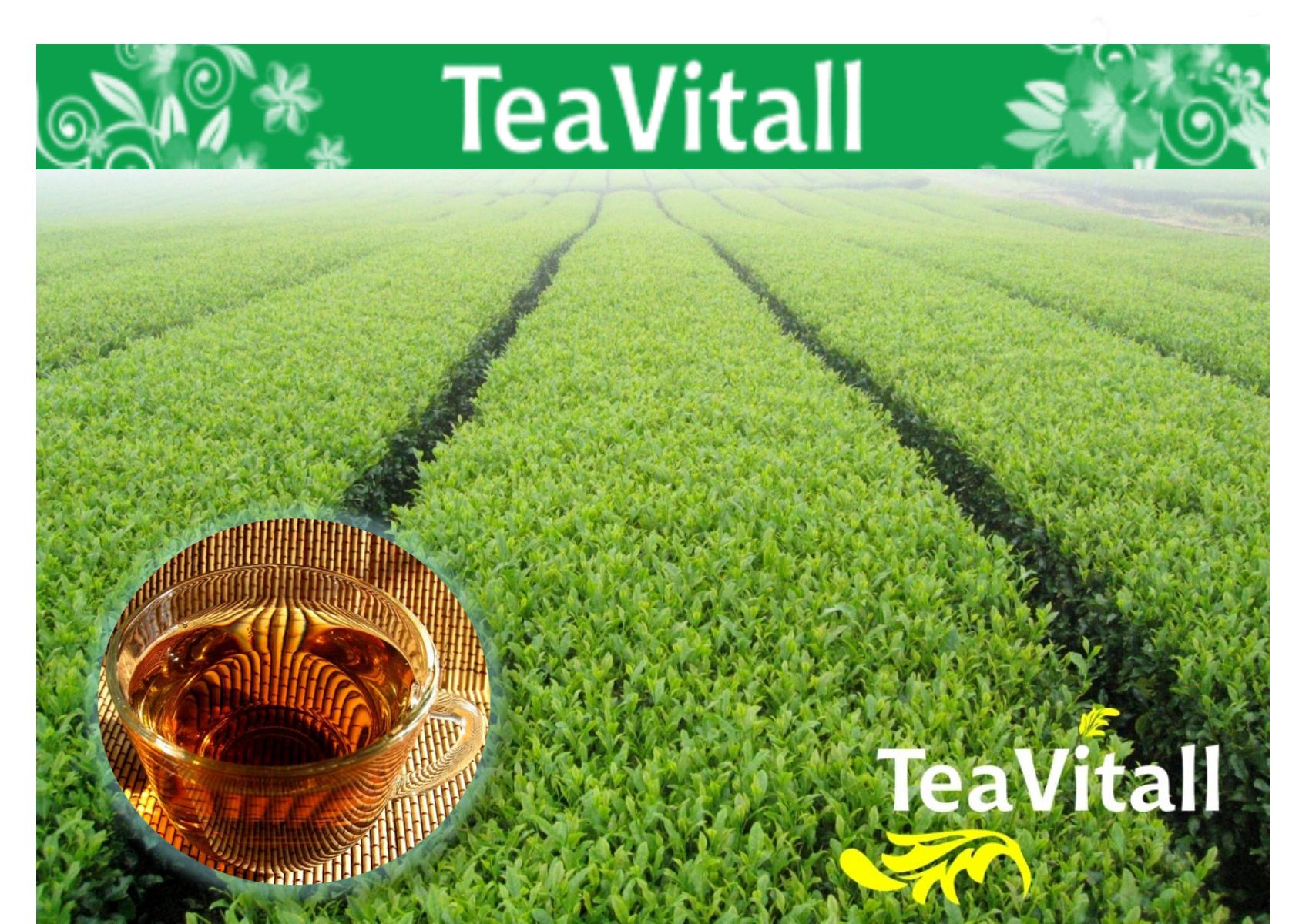Чайные напитки TeaVitall